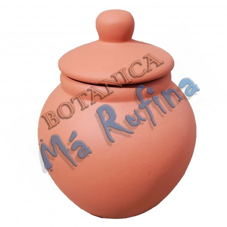 Small Clay Pot